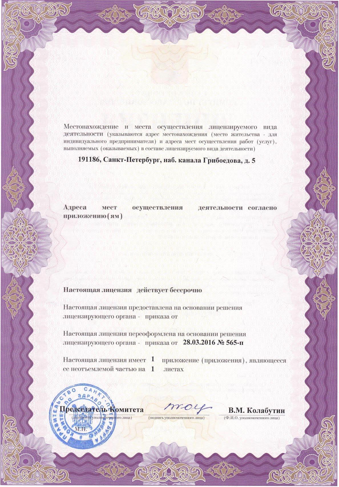 Лицензия на осуществление медицинской деятельности (2стр)
